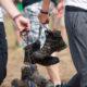 Abkühlen: Wie groß ist dein Fußabdruck?