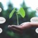 """Themenwoche """"Sustainability"""" – Mach mit!"""